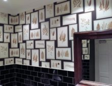 Wallpapering in a busy bar Cheltenham